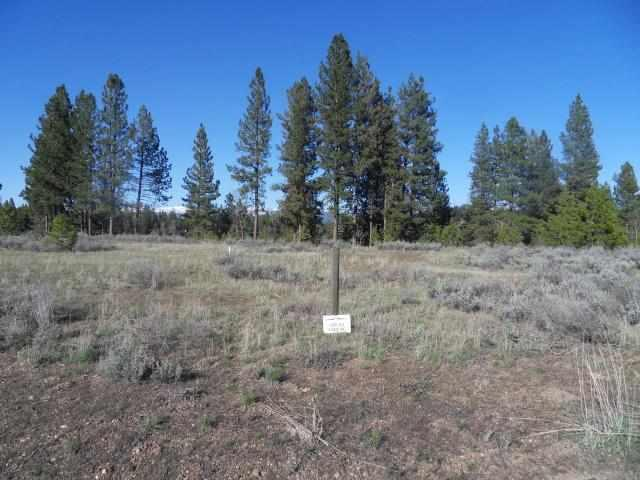 Lot 33 Targhee Drive, Mccall, ID 83638 (MLS #98667820) :: Boise River Realty