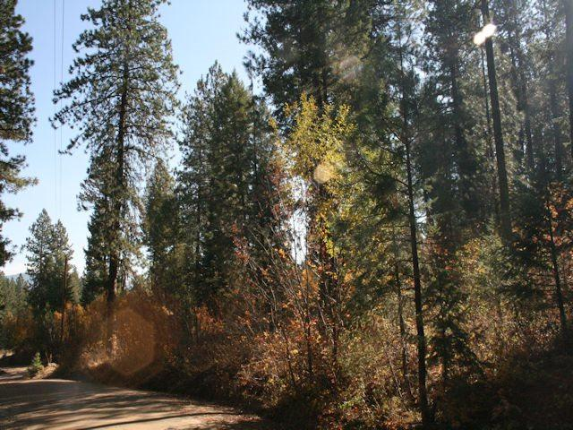 Lot 9 Skyridge, Garden Valley, ID 83622 (MLS #98674226) :: Jon Gosche Real Estate, LLC