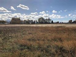 TBD 50 E, Burley, ID 83318 (MLS #98674311) :: Boise River Realty