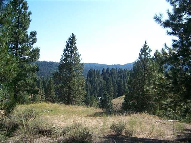 Tract 4 Midgaard, Boise, ID 83716 (MLS #98676452) :: Jon Gosche Real Estate, LLC