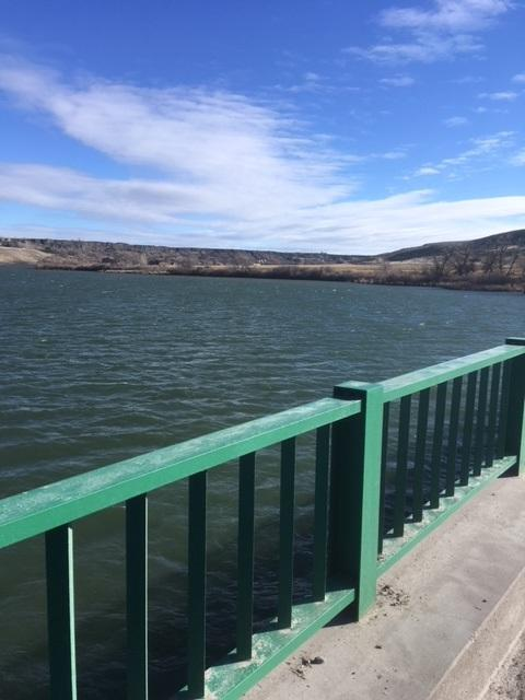 882 N 5204, Water Way Dr. Lot 28, Hagerman, ID 83332 (MLS #98679634) :: Jeremy Orton Real Estate Group