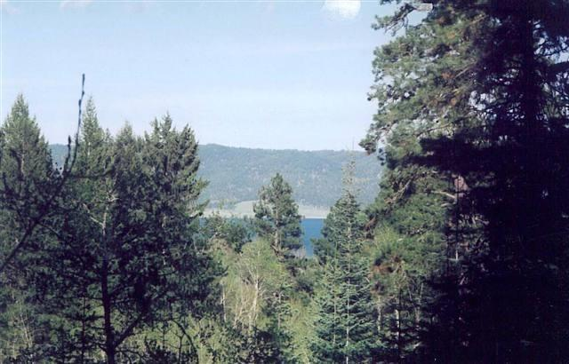 TBD Pine, Donnelly, ID 83615 (MLS #98680161) :: Zuber Group