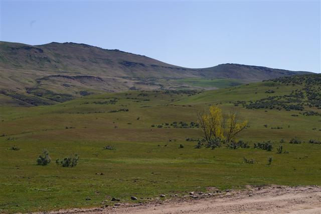 TBD Cove Road, Weiser, ID 83672 (MLS #98680832) :: Zuber Group