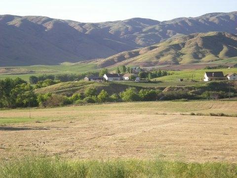 TBD Maria (Parcel C), Horseshoe Bend, ID 83629 (MLS #98682138) :: Boise River Realty