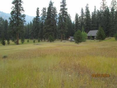 Lot 4 Ten Ax Sub 2 Blk 3, Lowman, ID 83637 (MLS #98682776) :: Boise River Realty