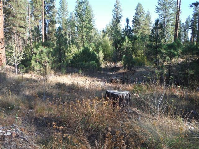 Lot 14 Elk Run Blk 1, Idaho City, ID 83631 (MLS #98682785) :: Expect A Sold Sign Real Estate Group