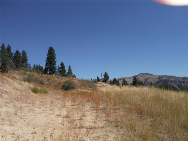 Lot 7 Blk 2 Clear Crk Estates # 12, Boise, ID 83716 (MLS #98682789) :: Boise River Realty