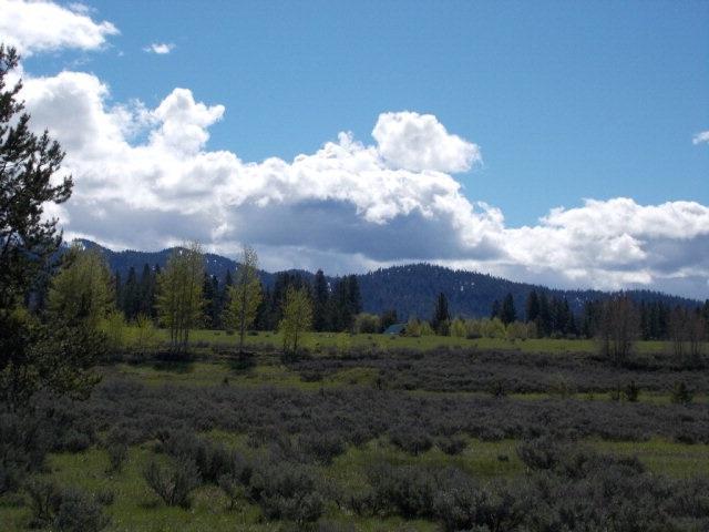 13804 Raptor Loop, Mccall, ID 83638 (MLS #98682990) :: Build Idaho