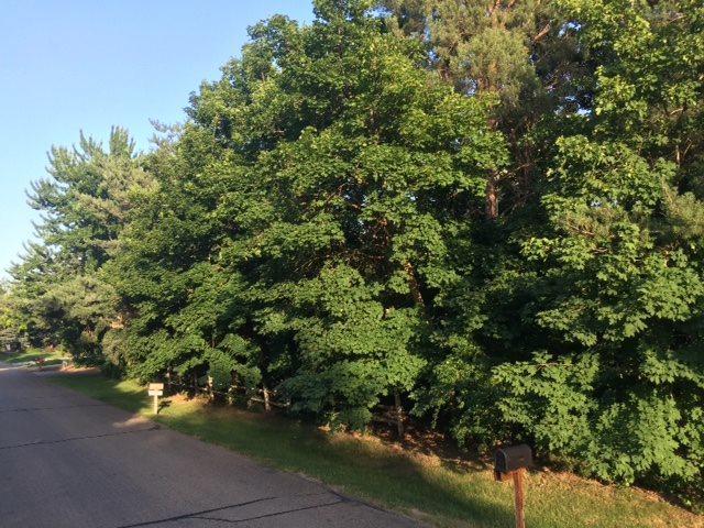 1009 W Steeple View Dr., Eagle, ID 83616 (MLS #98683283) :: Michael Ryan Real Estate