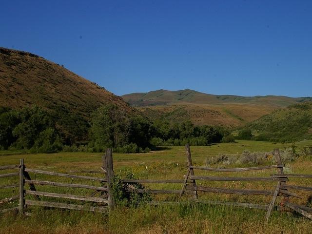 2237 Little Weiser River Road, Indian Valley, ID 83632 (MLS #98683324) :: Jon Gosche Real Estate, LLC