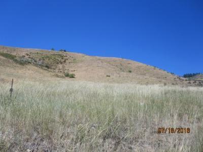 Lot 12 Wilderness Ranch Sub 4, Boise, ID 83716 (MLS #98683624) :: Juniper Realty Group