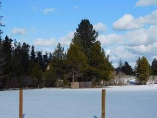 TBD Clear View Rd., Mccall, ID 83638 (MLS #98685105) :: Juniper Realty Group