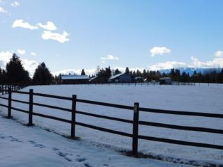 TBD Clear View Rd., Mccall, ID 83638 (MLS #98685108) :: Juniper Realty Group