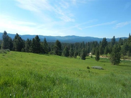 TBD Lot 19 & 20 Meadow Dr, Idaho City, ID 83631 (MLS #98685538) :: Expect A Sold Sign Real Estate Group