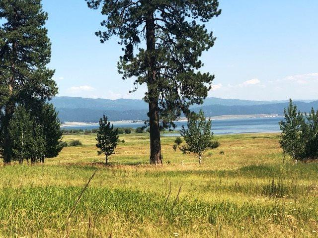 TBD Pine Trail, Donnelly, ID 83615 (MLS #98686055) :: Juniper Realty Group