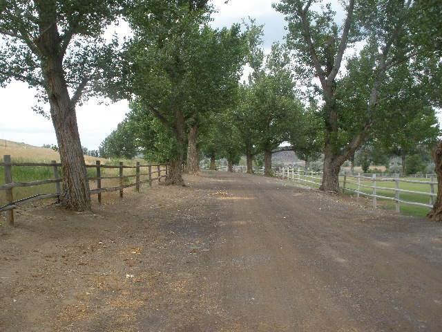 4521 Mesa View Rd, Buhl, ID 83316 (MLS #98687063) :: Build Idaho