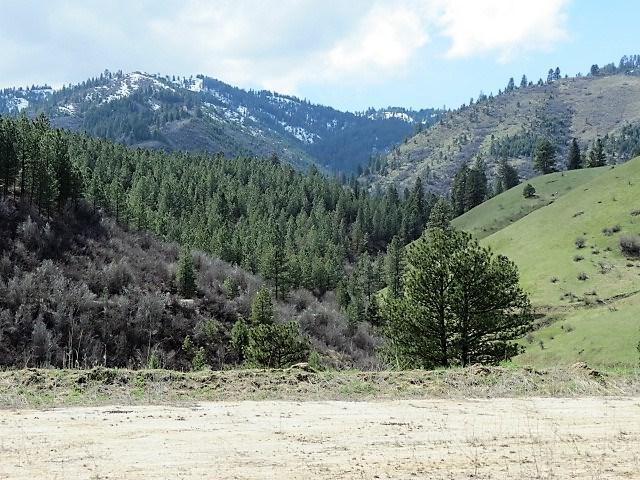 Lot 27 Black Bear Court, Garden Valley, ID 83622 (MLS #98688332) :: Boise River Realty
