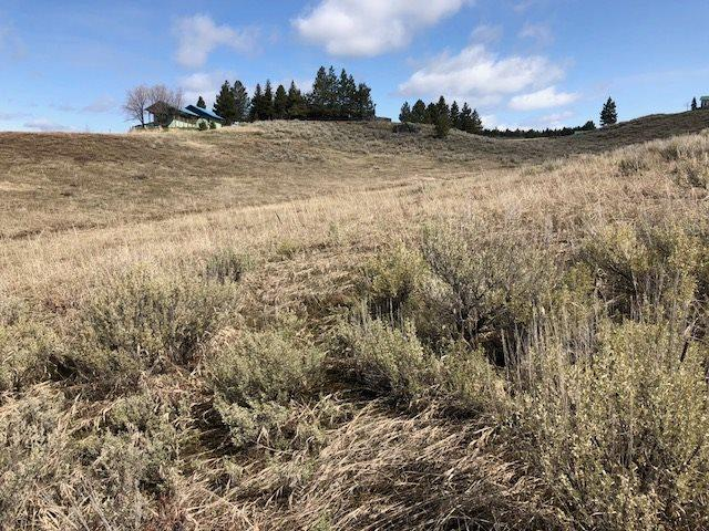 116 Herrick Lane, Cascade, ID 83611 (MLS #98689304) :: Team One Group Real Estate