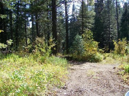 17 Eagle Trail, Donnelly, ID 83615 (MLS #98689944) :: Juniper Realty Group