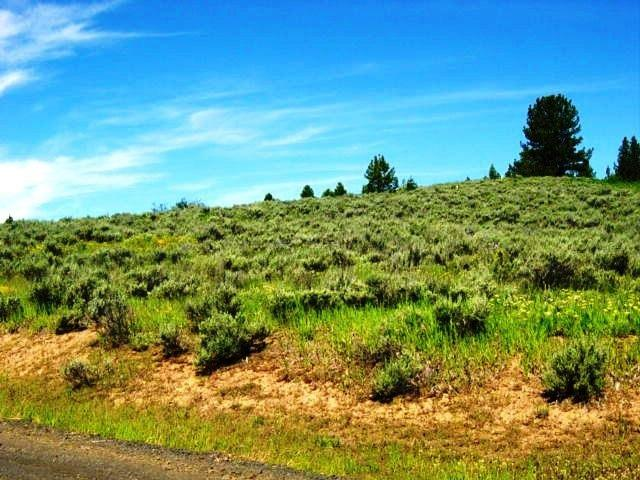 L7 B2 Wilderness Lake Ranch, Cascade, ID 83611 (MLS #98689951) :: Boise River Realty