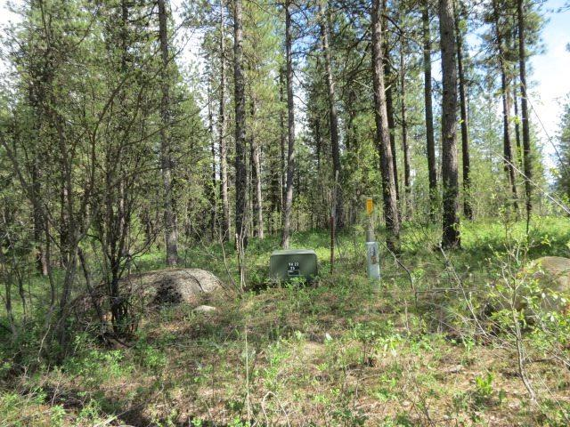 Lot 17 Valley High Rd., Garden Valley, ID 83622 (MLS #98690486) :: Juniper Realty Group