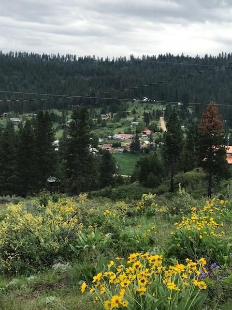 TBD Deadmans Gulch, Boise, ID 83716 (MLS #98693224) :: Juniper Realty Group