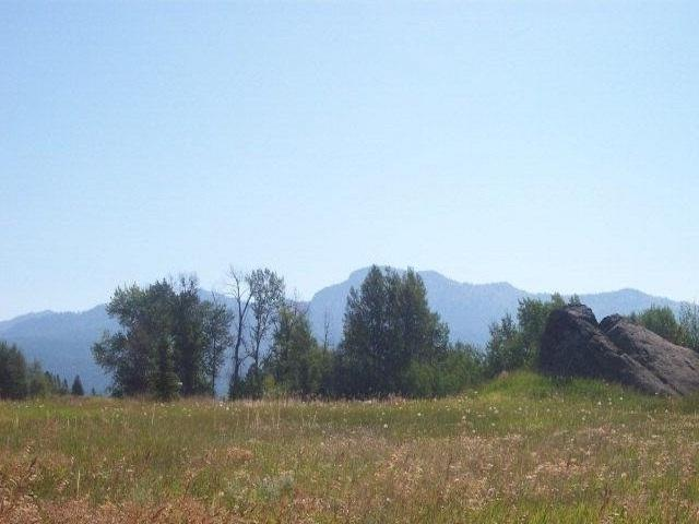 tbd Carefree Lane, Mccall, ID 83638 (MLS #98693621) :: Build Idaho