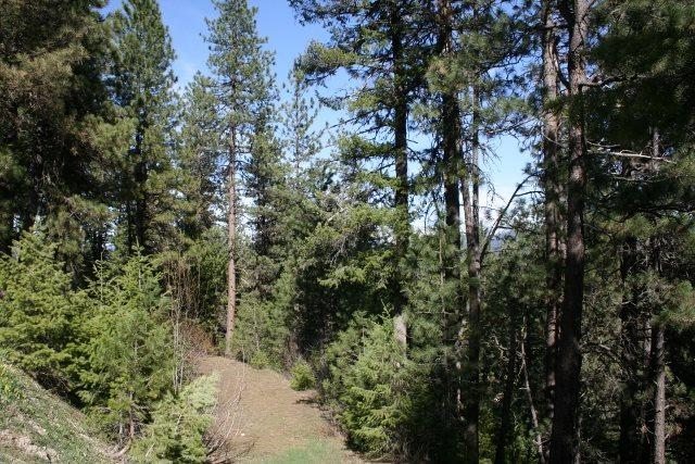 Lot 72 Eagle Ridge, Garden Valley, ID 83622 (MLS #98694712) :: Boise River Realty