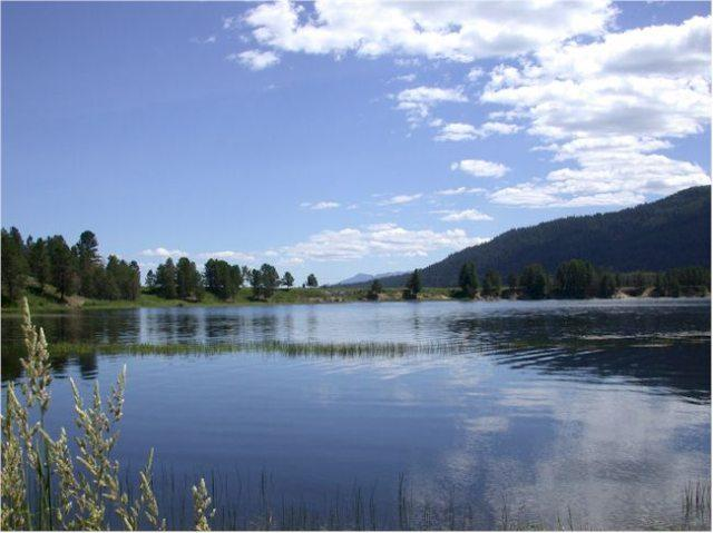 13136 Hawks Bay Road, Donnelly, ID 83615 (MLS #98695790) :: Full Sail Real Estate