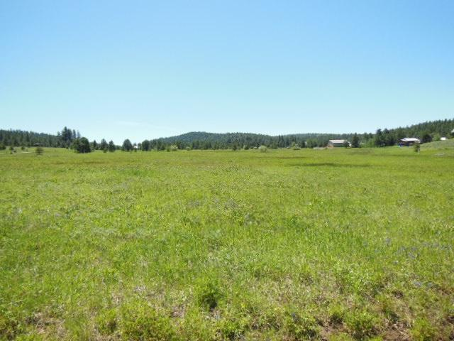 Lot 1 Whitefield, Mccall, ID 83638 (MLS #98696157) :: Juniper Realty Group