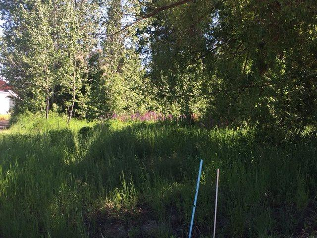 141 State St, Donnelly, ID 83615 (MLS #98697199) :: Full Sail Real Estate