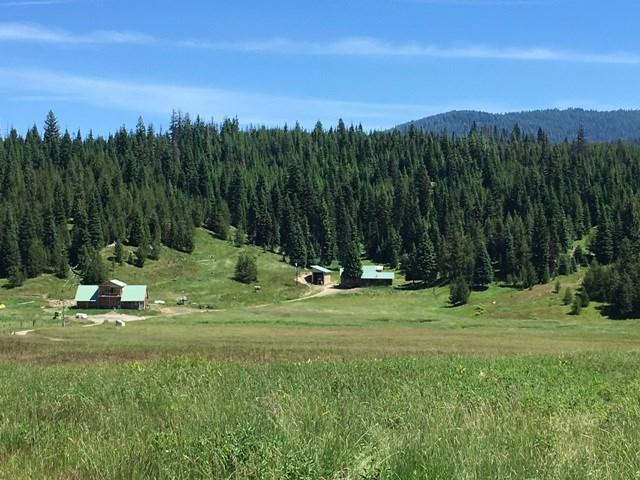158 Little Elk Lane, Elk City, ID 83525 (MLS #98697816) :: Build Idaho