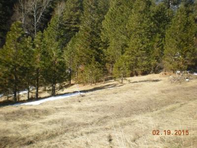 Lot 01 Easley Creek Rd., Garden Valley, ID 83622 (MLS #98703106) :: Juniper Realty Group