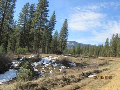 Lot 47 Eagle Eye, Garden Valley, ID 83622 (MLS #98703123) :: Juniper Realty Group