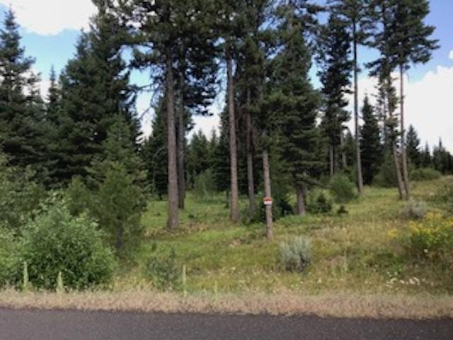 TBD Sundance Drive, Mccall, ID 83638 (MLS #98704931) :: Juniper Realty Group