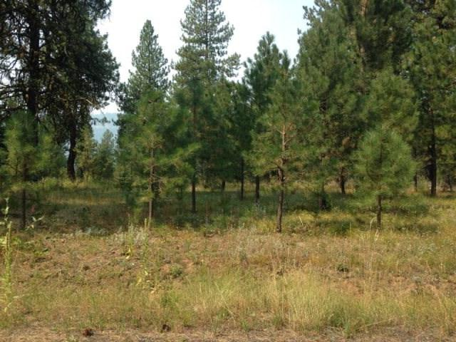 LOT 19 Blackhawk Lake Dr., Mccall, ID 83638 (MLS #98707056) :: Team One Group Real Estate