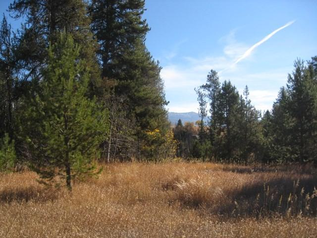 14174 Jefferson, Mccall, ID 83638 (MLS #98710596) :: Team One Group Real Estate