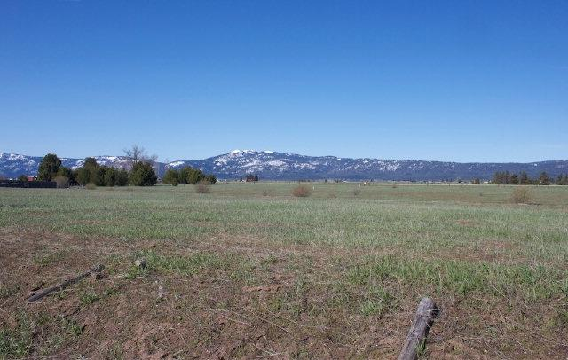 TBD Hwy 55, Mccall, ID 83638 (MLS #98712896) :: Team One Group Real Estate