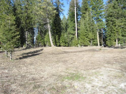 60 Clearwater Ct., Donnelly, ID 83615 (MLS #98714593) :: Minegar Gamble Premier Real Estate Services