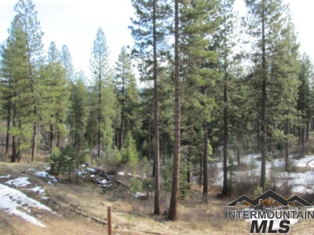 Lot 41 Eagle Eye, Garden Valley, ID 83622 (MLS #98716299) :: Juniper Realty Group
