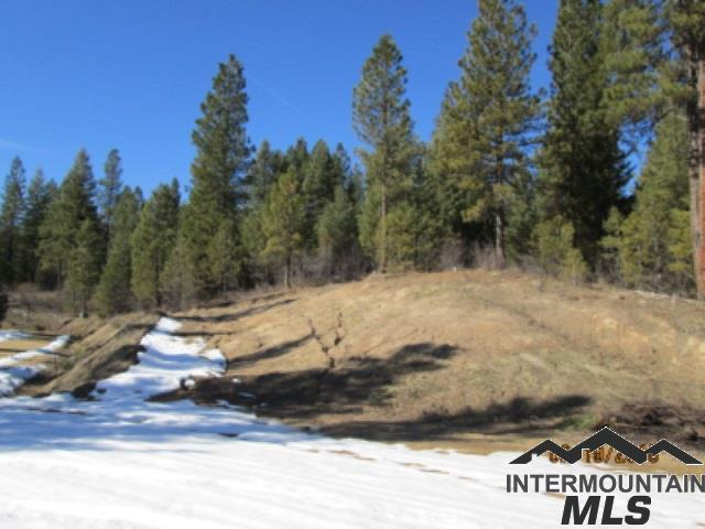 Lot 19 Cardinal, Garden Valley, ID 83622 (MLS #98716319) :: Juniper Realty Group