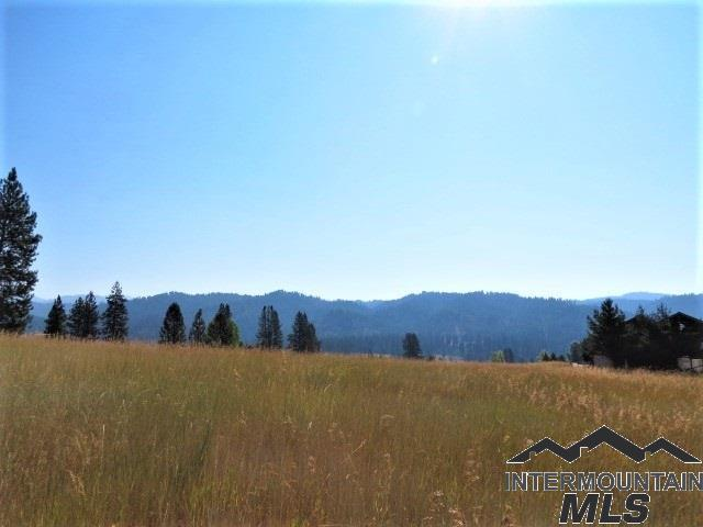 Lot 33 Scriver Woods, Garden Valley, ID 83622 (MLS #98717672) :: Bafundi Real Estate