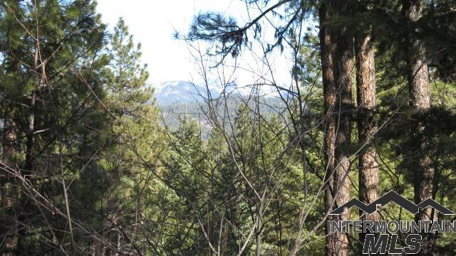 Lot 32 Mustang Way, Garden Valley, ID 83622 (MLS #98720488) :: Bafundi Real Estate