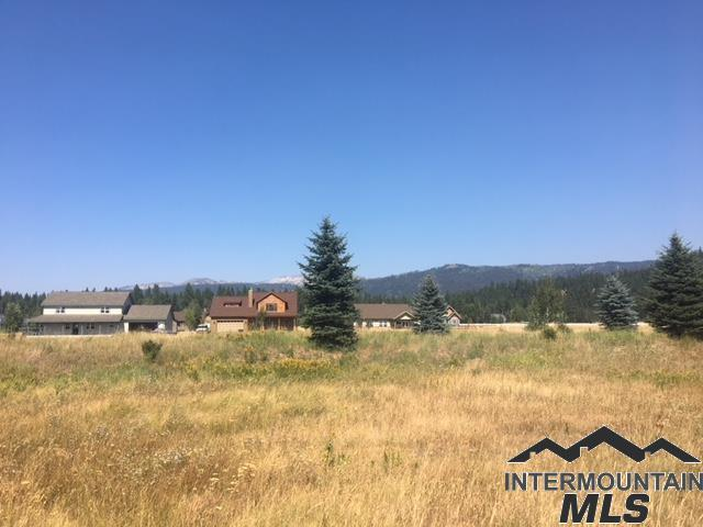 22 Ginney Way, Mccall, ID 83638 (MLS #98721645) :: Juniper Realty Group