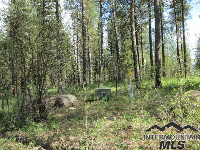 Lot 17 Valley High Rd., Garden Valley, ID 83622 (MLS #98724266) :: Full Sail Real Estate