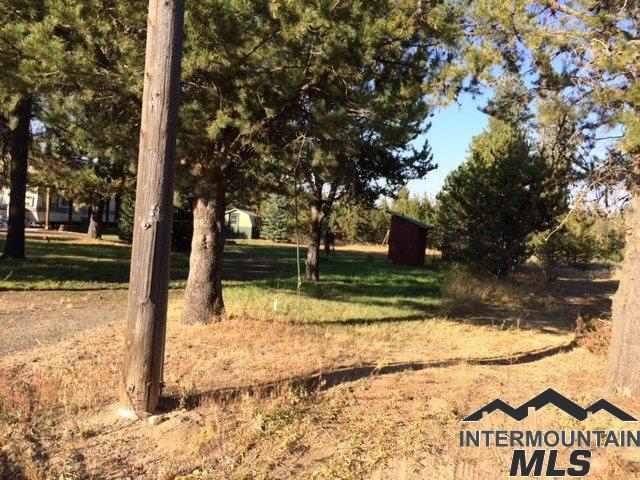 13108 Cameron Dr, Donnelly, ID 83615 (MLS #98725993) :: Bafundi Real Estate