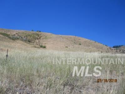 Lot 12 Chaparral Road, Boise, ID 83716 (MLS #98727283) :: New View Team