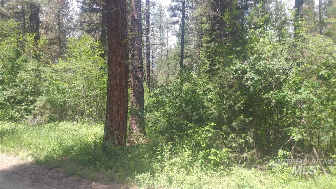 Scriver Woods - Photo 1