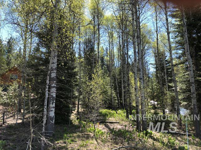 Lot 17 Majestic View Circle, Mccall, ID 83638 (MLS #98729059) :: Boise River Realty