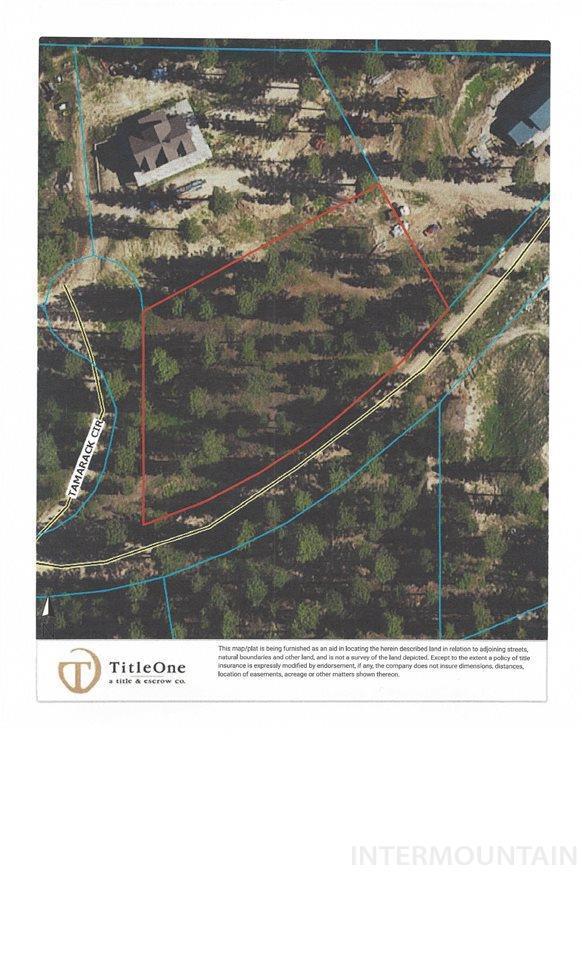 Lot 2 Tamarack, Idaho City, ID 83631 (MLS #98730378) :: New View Team